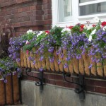 Town-Hall-Planters-web